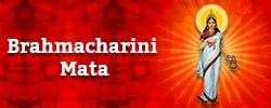 Maa Brahmacharini Puja