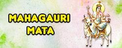 Maa MahaGauri Puja