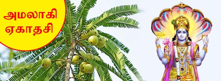 ஆமாலக்கி ஏகாதசி