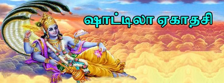 ஷட் தில ஏகாதசி